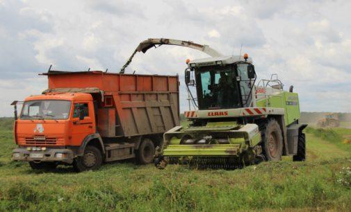 Оптимистические планы областного агропрома