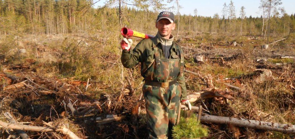 Лесной профсоюз: год прошел без потрясений