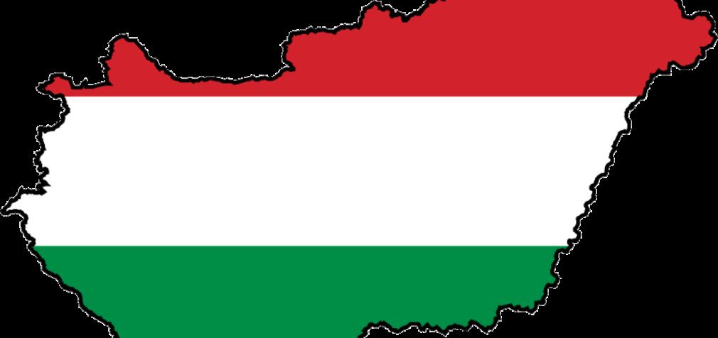 Венгрия: уволен профсоюзный лидер
