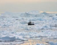 Политические сети арктического рыболовства