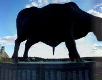 Эстония: забастовка на мясокомбинате