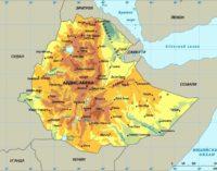 Эфиопия: за достойную заработную плату