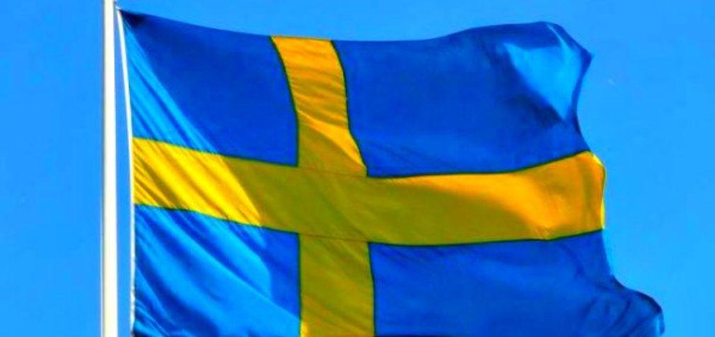 Швеция: чип на ладонь