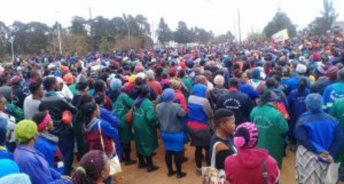 Свазиленд: избиты и арестованы профсоюзные лидеры