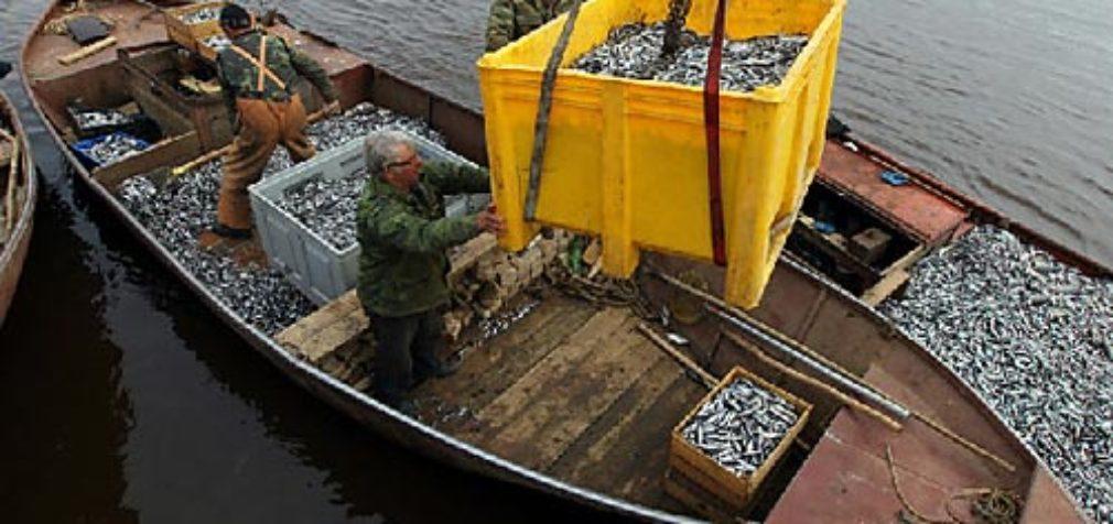 Рыбаки и рыбоводы подвели итоги 2018 года