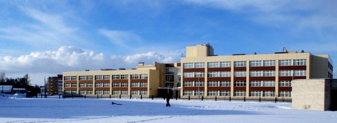 Школа № 335: главное – забота о человеке