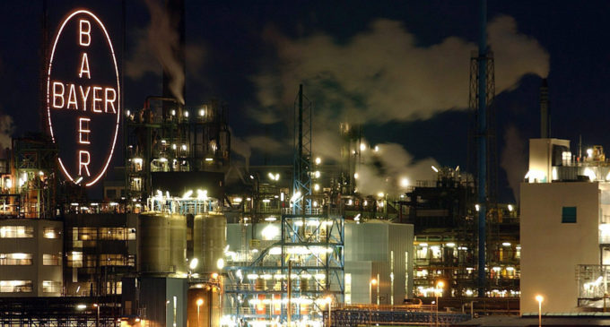 Германия: рабочих Bayer не сократят до 2025 года