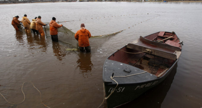 Санкт-Петербург: рыбак не нужен?