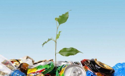 Ленобласть увеличивает расходы на поддержку экологии