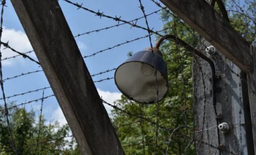 Ленобласть: преступления нацистов– без срока давности