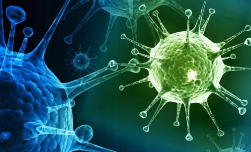 Коронавирус и грипп: ставка на профилактику